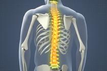 Rzeszow rehabilitacja urazy rdzenia kręgowego
